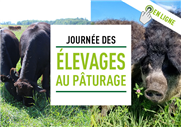 Présentation des chartes de pâturage et gestion des pâturages en temps de sécheresse (Using a Grazing Chart to Get What You Want)