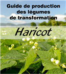 Guide de production des légumes de transformation Haricot