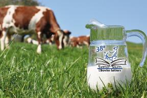 Symposium sur les bovins laitiers 2014